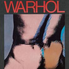 sale andy warhol TORSOS poster
