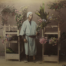 vancouver fine art sale kusakabe kimbei Selling Flowers